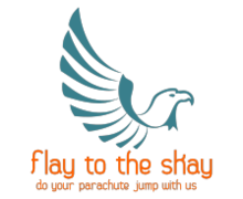 Fly to the Sky Logaster logo